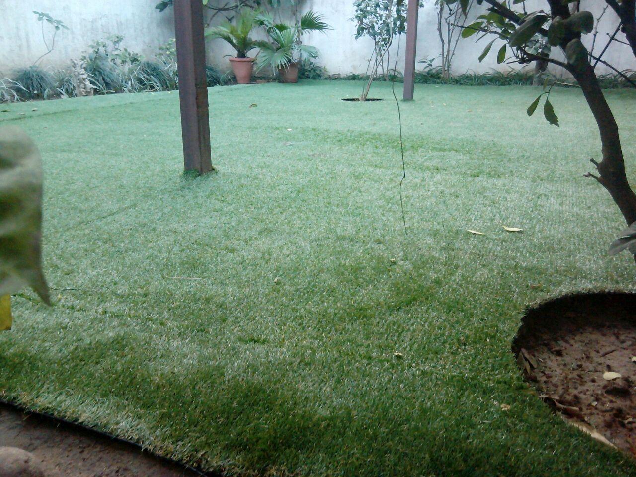 artificial grass dwarka