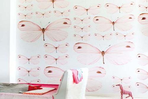 Wallpaper in Dwarka